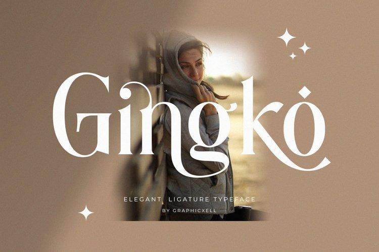 Gingko Ligature Typeface example image 1
