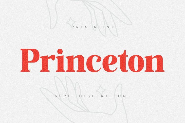 Princeton Font example image 1