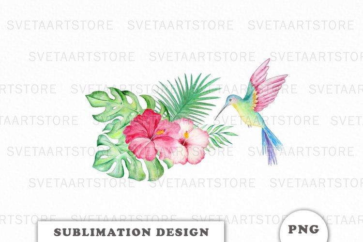 Watercolor Hummingbird Sublimation Downloads