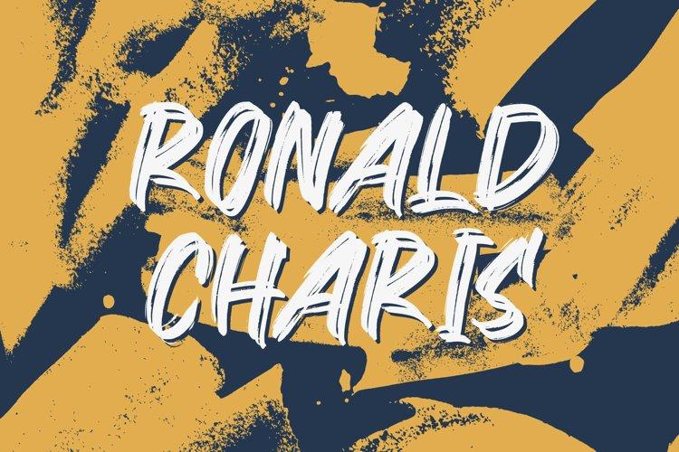 Ronald Charis - Textured Brush Font example image 1