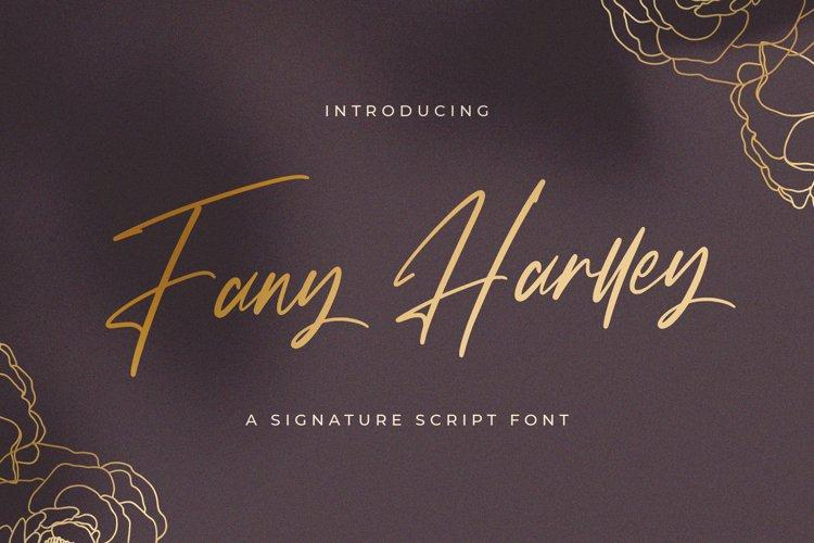 Fany Harlley - Handwritten Font example image 1