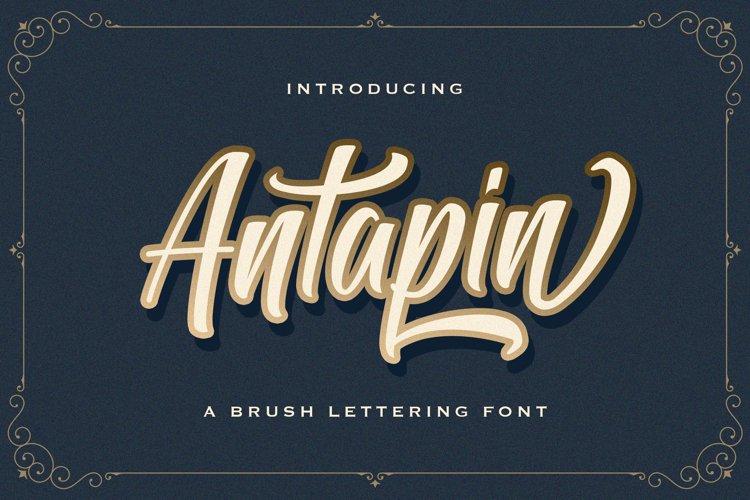 Antapin - Bold Script Font example image 1