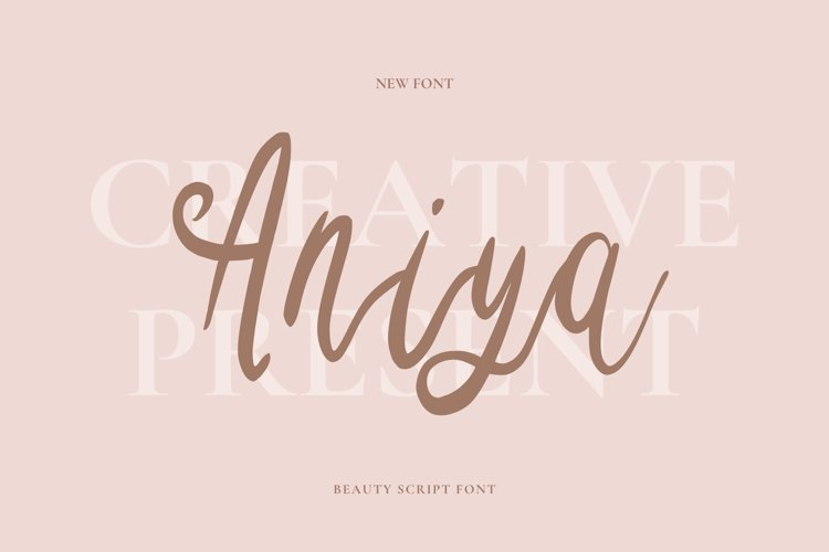 Aniya Font example image 1
