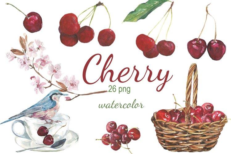 Watercolor Cherry Clip art
