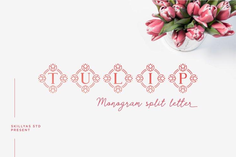 Tulip Monogram split letter font example image 1