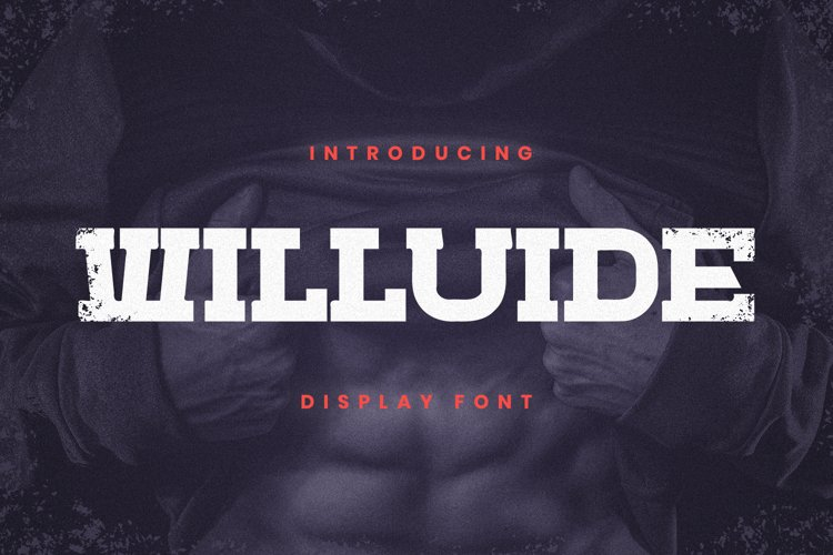 Willuide Font example image 1