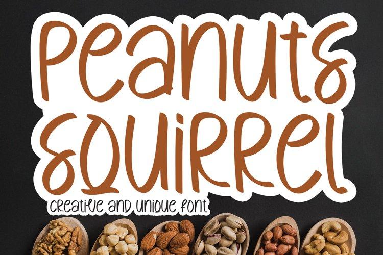 Peanuts Squirrel example image 1