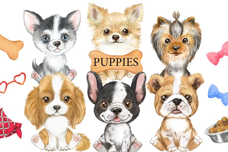 Puppies watercolor clipart. Cute little dogs, animal clipart