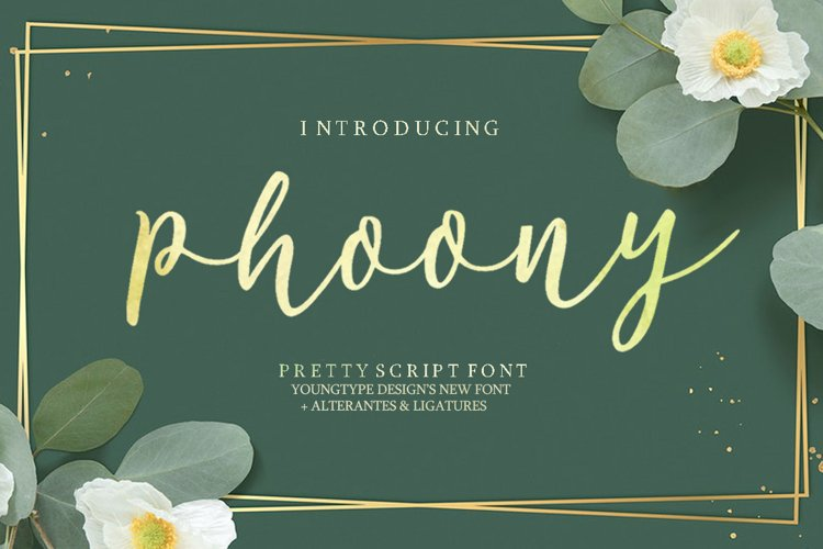 Phoony Script example image 1