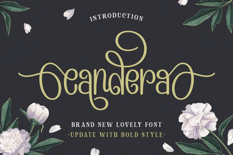 Candera Font example image 1