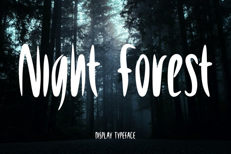 Night Forest example image 1