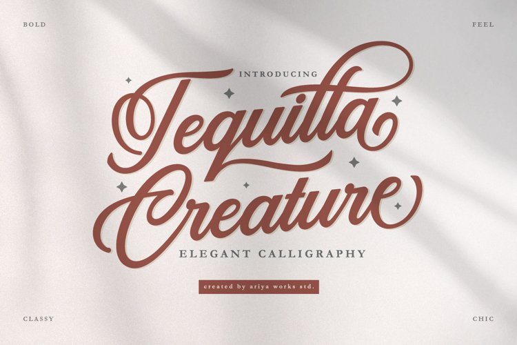 Tequilla Creature   Bold Calligraphy Fonts example image 1