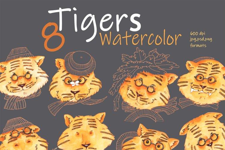 A set of tigers. Watercolor.
