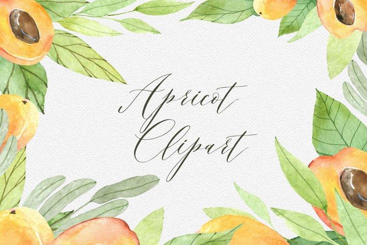 Peach clipart Watercolor peach Watercolor Fruits Clipart png