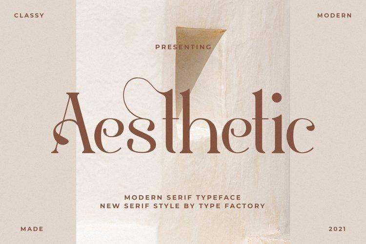 Aesthetic - Modern Serif Font example image 1