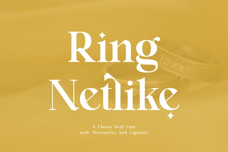 Ring Netlike - Classic Serif Font example image 1