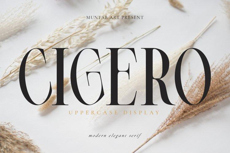 Cigero   Modern Serif example image 1