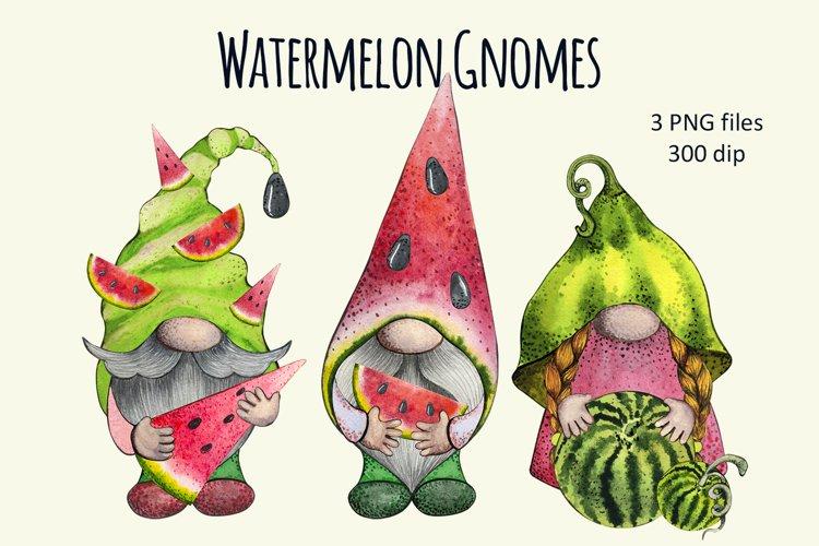 Watercolor watermelon Gnomes Clipart set png, Summer Fruit