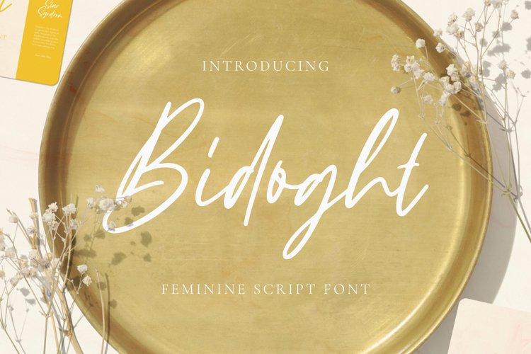 Bidoght Font example image 1