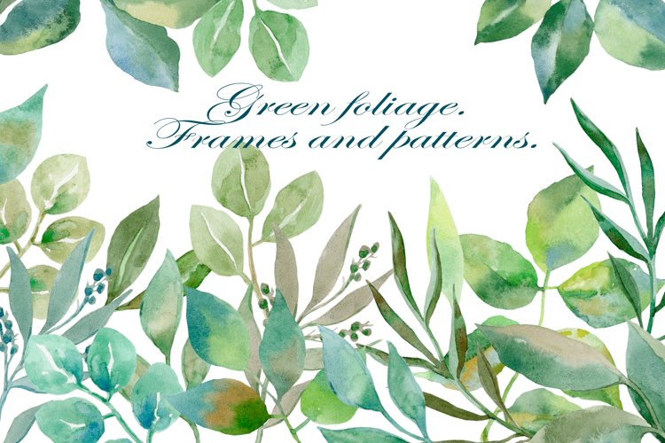Green foliage. Watercolor clipart collection.