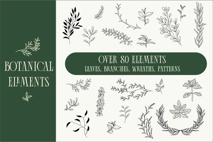 80 Botanical elements svg example image 1