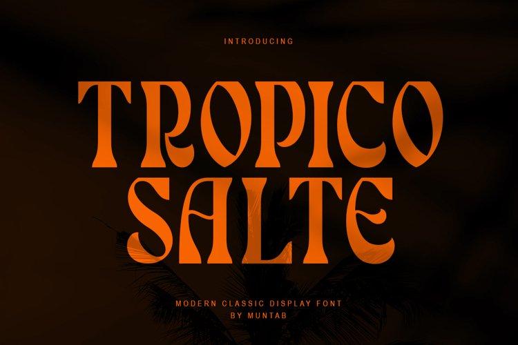 Tropico Salte | Serif Display example image 1