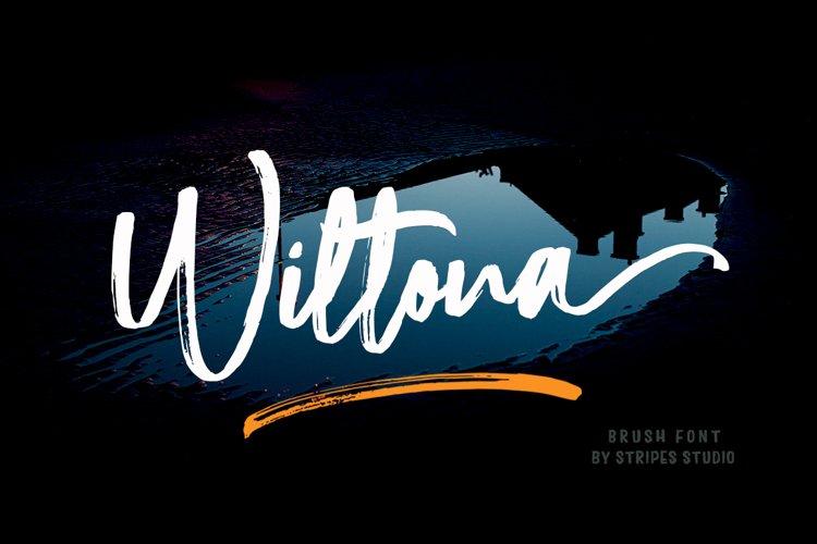 Wiltona Brush example image 1