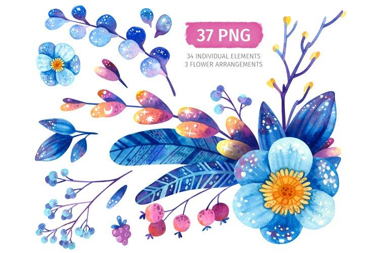 Watercolor blue flowers, botanical clipart
