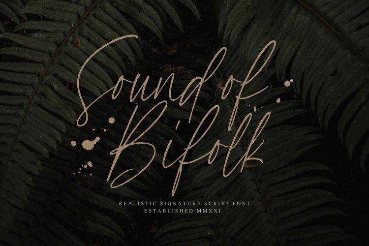 SoundOfBifolk Font example image 1