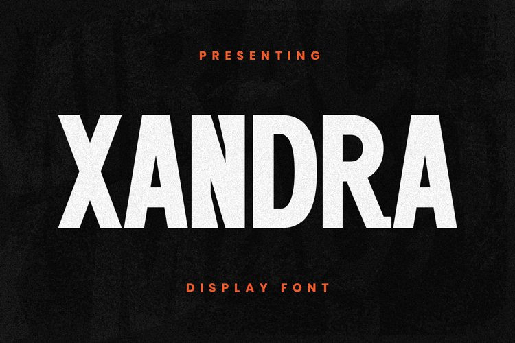 Xandra Font example image 1