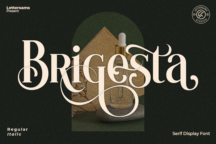 Brigesta - Serif Display Font example image 1