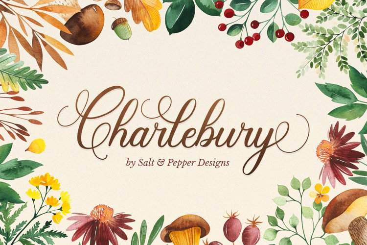 Charlebury Script Font example image 1