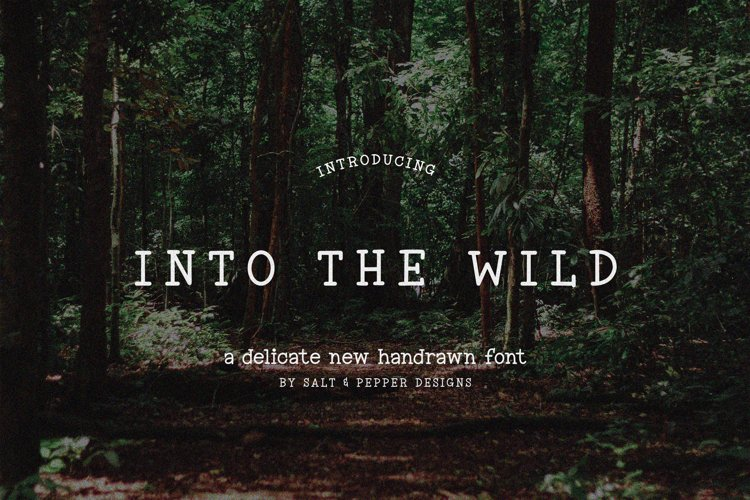 Into the Wild Serif Font