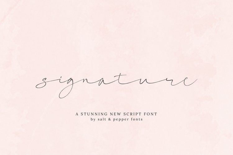 Signature Script Font example image 1
