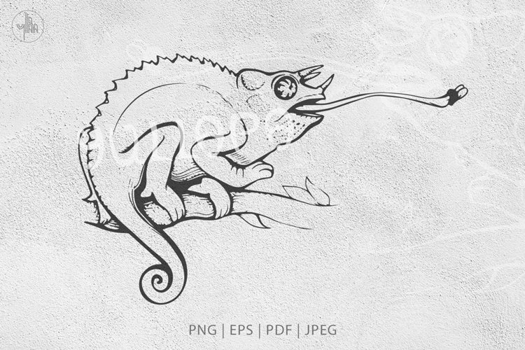 Jackson's Chameleon, Wild animal vector lineart & PNG example image 1