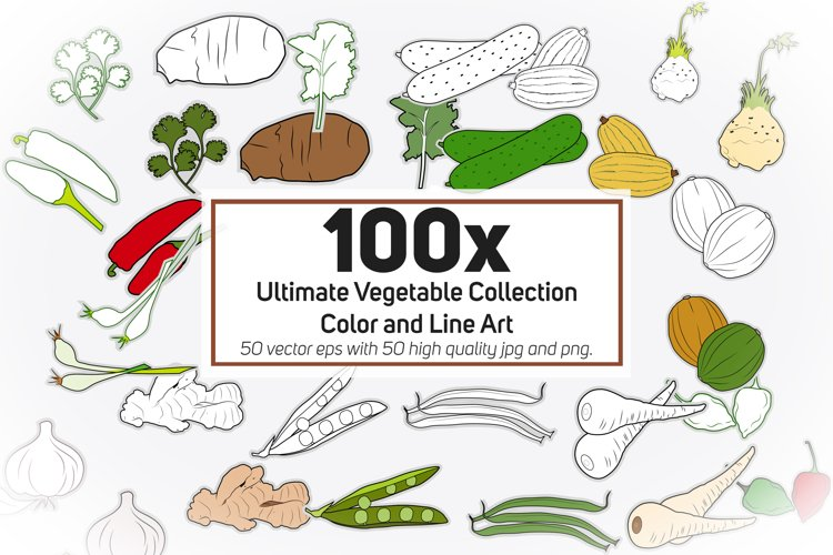 100x Ultimate Vegetable Collection - Color and Line Art