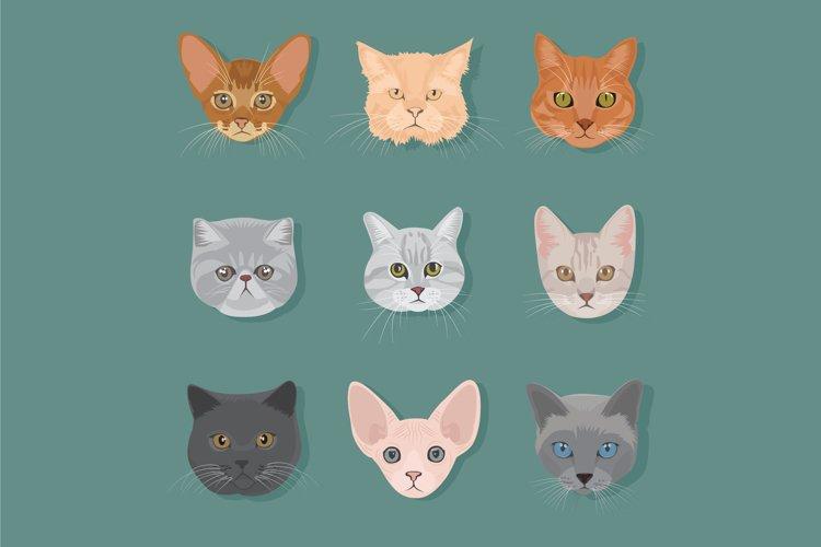 cat head type vector set