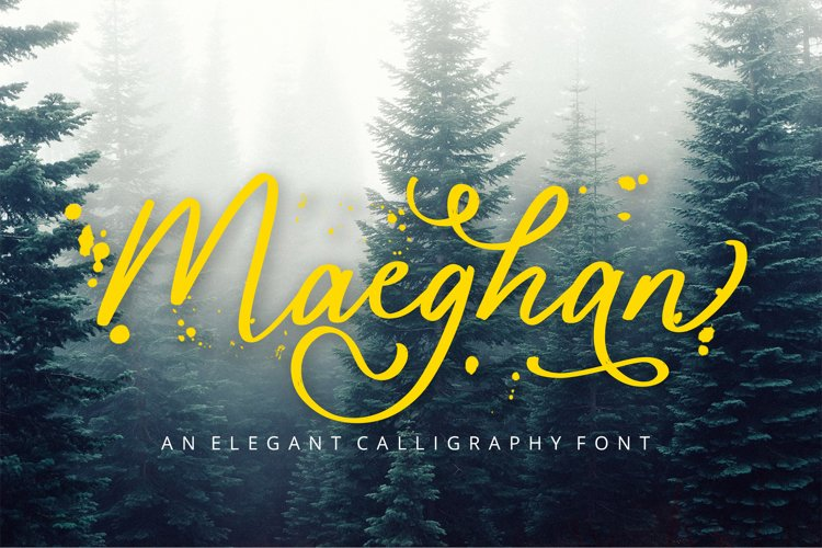 Maeghan Calligraphy Font example image 1