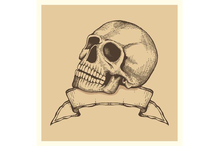 Human skull sketch with ribbon banner - vector