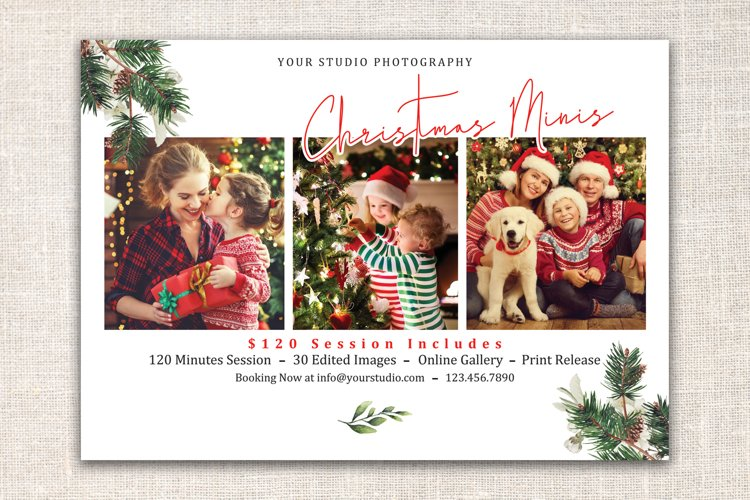 Christmas Mini Session Template example image 1