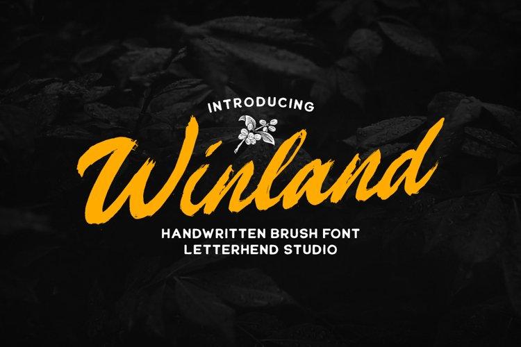 Winland - Brush Font example image 1