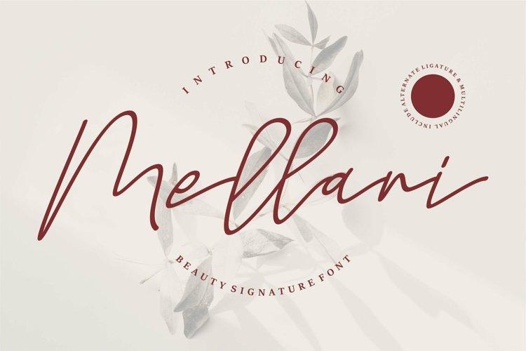 Web Font Mellani - Beauty Signature Font example image 1