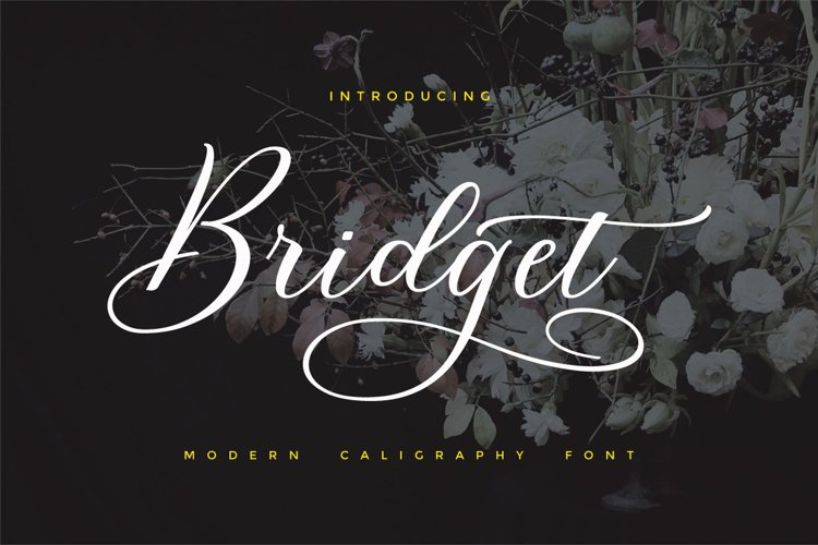 Bridget Script example image 1