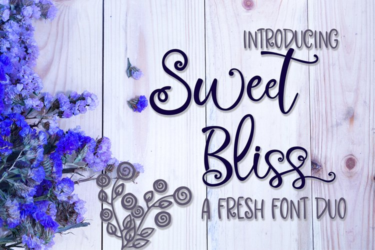 Sweet Bliss Font Duo example image 1