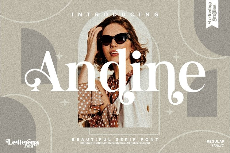 Andine - Beautiful Serif Font example image 1