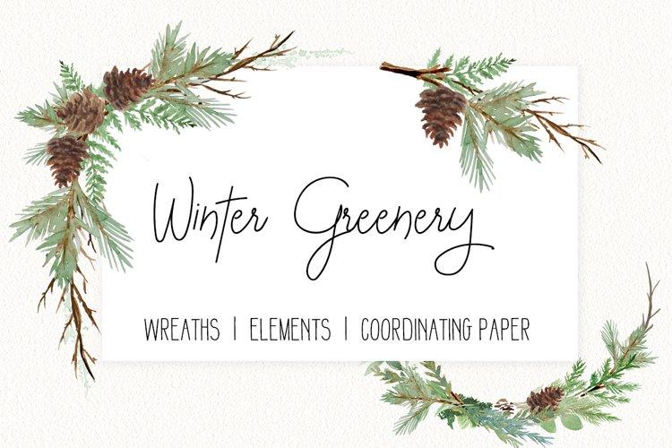 Winter Greenery Watercolor clip art - PNG format