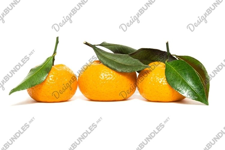 fresh and ripe tangerines with example image 1