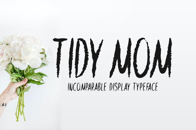 Tidy Mom example image 1