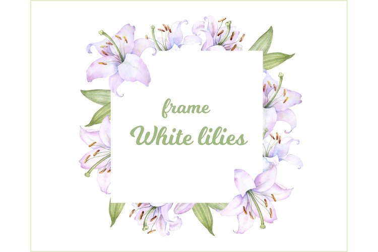 Square frame with watercolor white and pink lily flowers