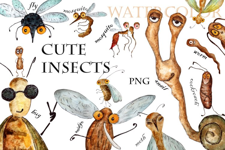 Watercolor drawings of cute insects